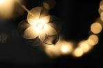 Flower Lights from cottonlight on Etsy